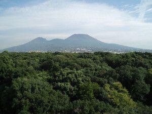 Vesuve---Portici---V.Ziogas-Panoramio.jpg En comparaison avec une photo prise du même point de vue, le peintre a exagéré les pentes du volcan, cherchant à magnifier la vision du Vésuve par rapport aux autres éléments naturels, qui eux sont rapportés avec beaucoup de réalisme et un grand soucis du détail. Photo du Vésuve de Portici - Panoramio - Vasilios Ziogas.