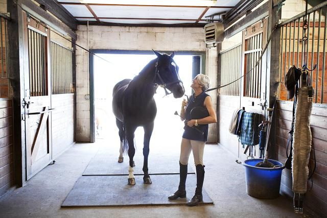 How much does horse boarding cost? Here is a look at the costs involved with boarding your horse at a boarding stable. Learn the about the things that can affect the cost of horse board and types of board available.