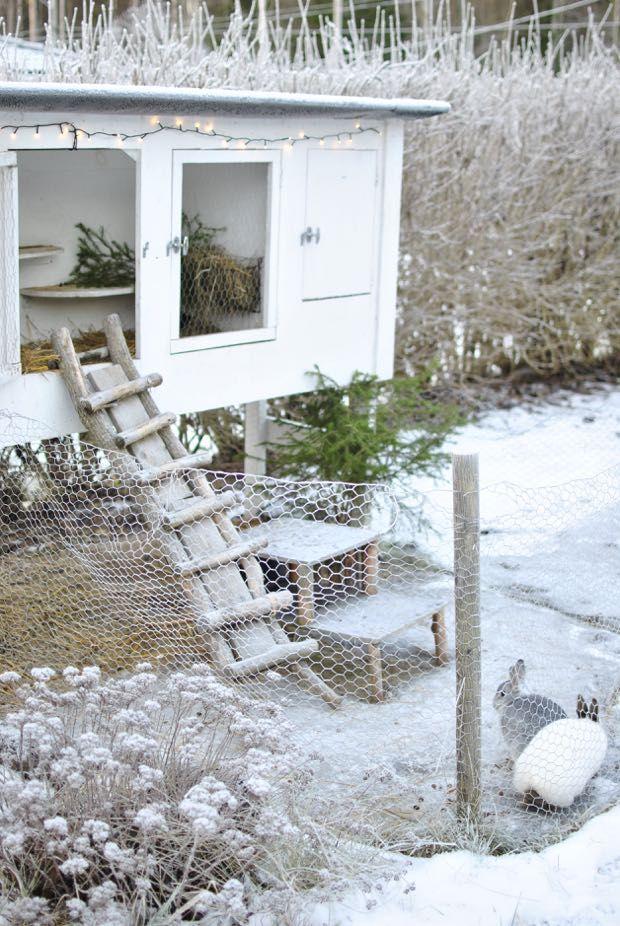 Best 25 cabane pour lapin ideas on pinterest cabane for Construire cabane lapin