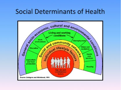 Social model of health essay free