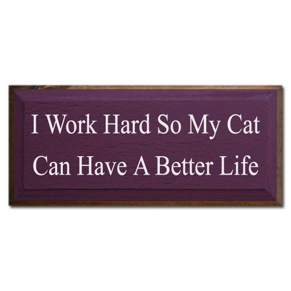 True story. -- I Work Hard So My Cat Has A Better Life.: Beckham Mia Solo Poopsi Cats, Kitty Cats, Big Cats, Animal Rights, Cat Signs, Cat Stuff, Critter Laughs