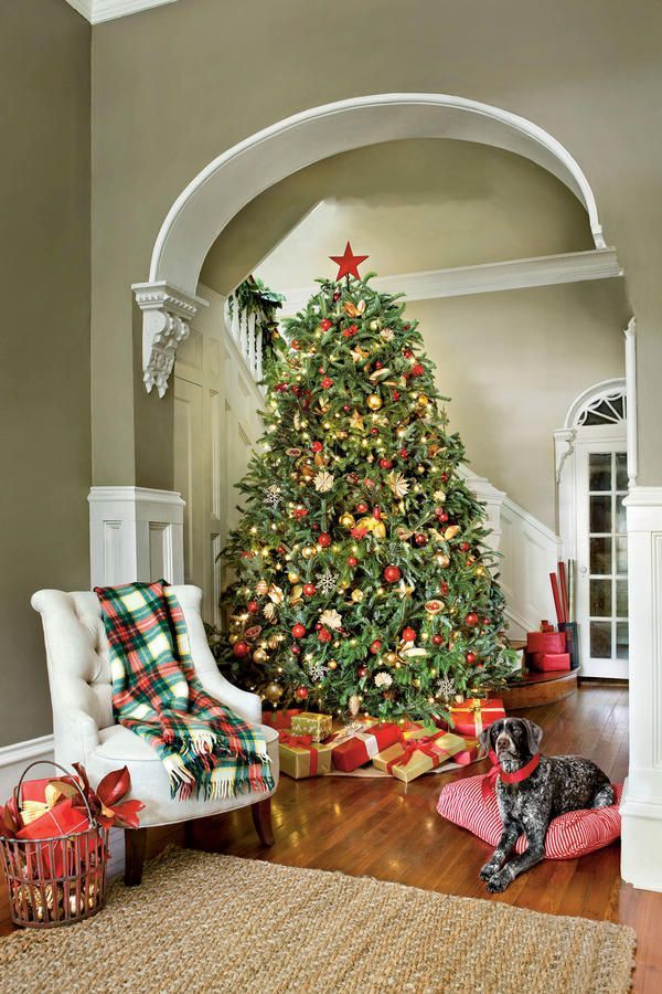 our favorite christmas trees nostalgic red gold - Christmas Decorations Pinterest