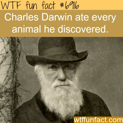 Charles Darwin ate all animals that the discovered - WTF fun fact