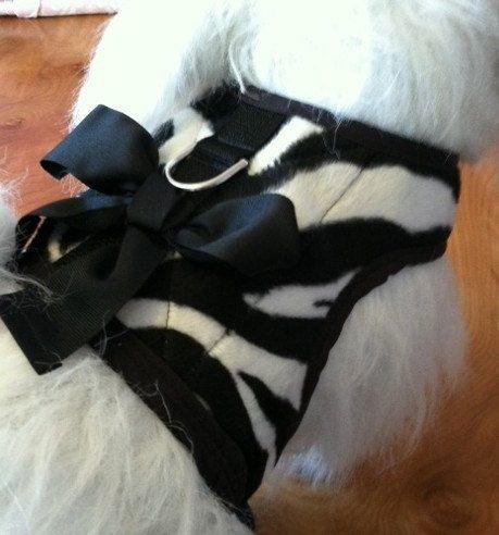 Venta cebra perro pequeño arnés con arco hecho en los E.e.u.u.