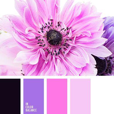 белый, бледно-голубой, бледно-лиловый, бледно-розовый, бледно-фиолетовый, васильковый цвет, лиловый цвет, оттенки фиолетового, пурпурный, розовый, темно-пурпурный, темно-фиолетовый.