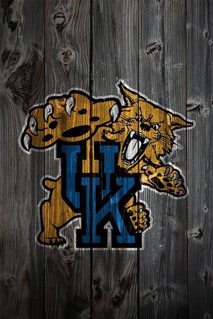 University Of Kentucky Wildcat On Wood IPhone Wallpaper