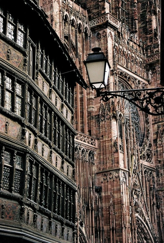 Strasbourg Cathedral.  Whoever would have thought when I was studying art in the sixties that someday I would have five (eventually six) children with whom I could share my knowledge of art history and that they would be as enthusiastic about it as their mom and dad!