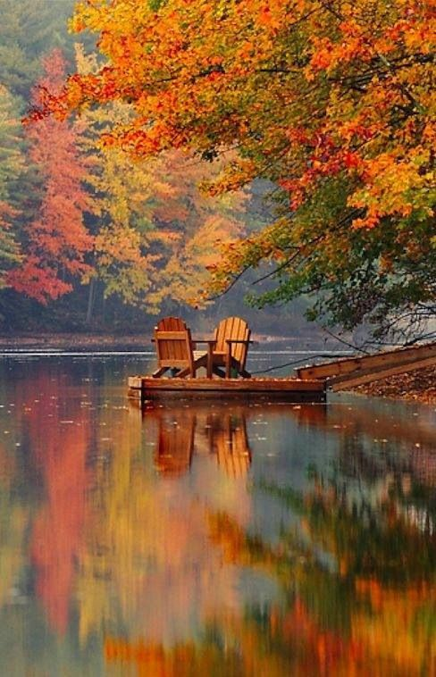 I would love to sit there and soak up the serenity.
