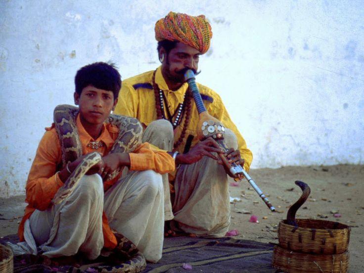hot'n'sharp spirit: ο γητευτής των φιδιών - σύνθεση φιδιών και χορδών
