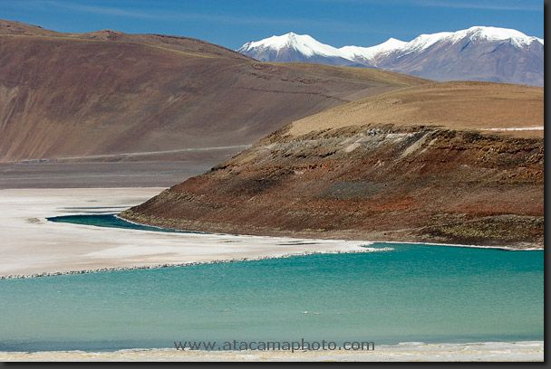 Photo: Salar de Carcote near Calama Chile