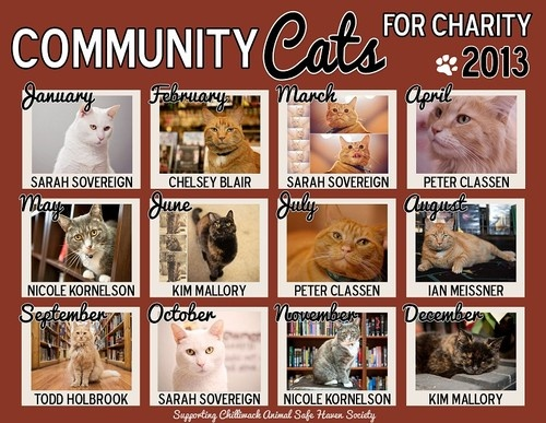 Community Cats for Charity