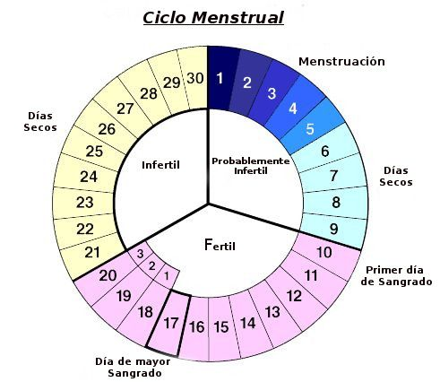 30 best Natural Fertility Management images on Pinterest Natural