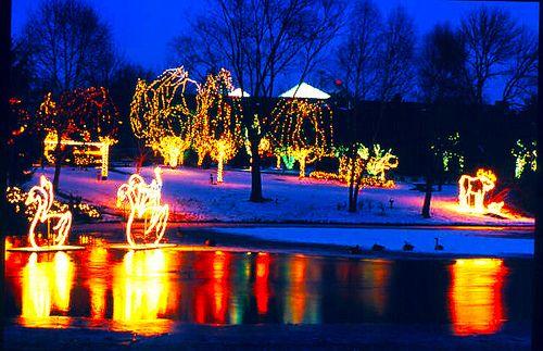 Wildlights at the Columbus Zoo and Aquarium - December