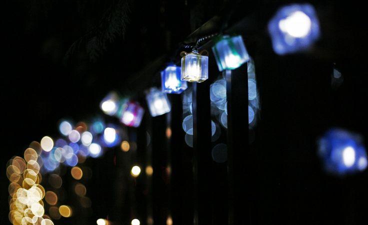 wallpapers - Trouwen Kerst: http://wallpapic.nl/hoge-resolutie/trouwen-kerst/wallpaper-2999