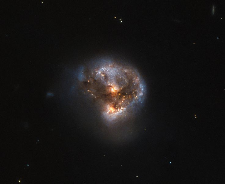 This image shows the megamaser galaxy LEDA 58817, which lies in the constellation Ophiuchus, about 370 million light-years away. Image credit: NASA / ESA / Hubble / Judy Schmidt, www.geckzilla.com.