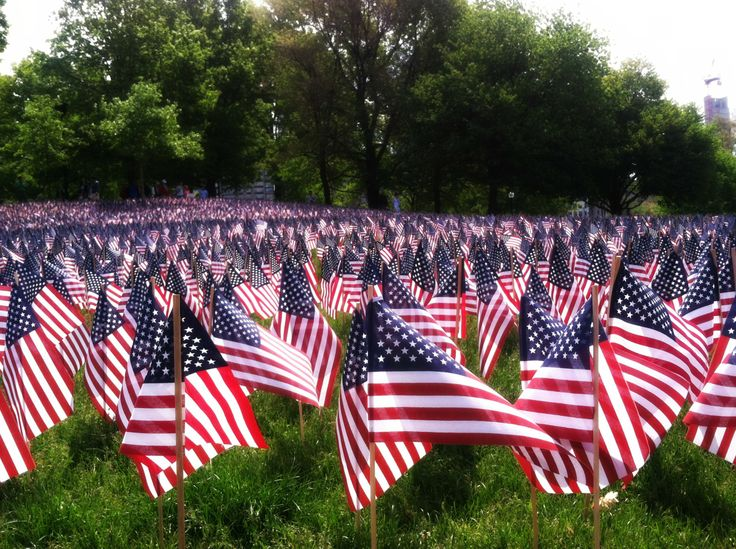 memorial day flags pictures