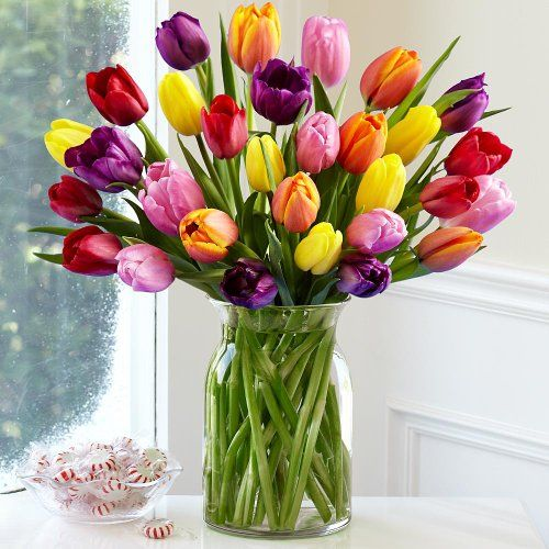 30 Multi-Colored Tulips (with FREE glass vase) - Flowers