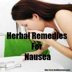 7 Best Herbal Remedies For Nausea