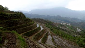China- Dragon's Backbone Rice Terraces, Guangxi