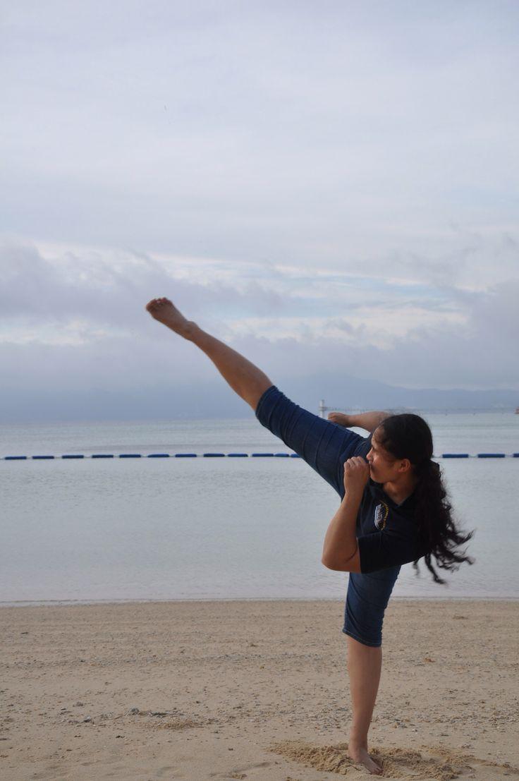 Vovinam Viet VO Dao (Vietnamese martial arts) it's a way of life.