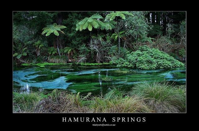 HAMURANA SPRINGS -done