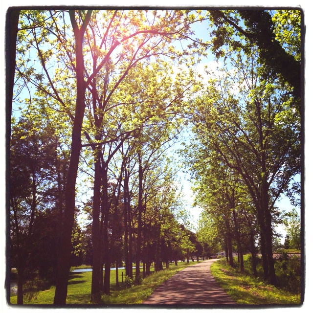 Walk in the park.