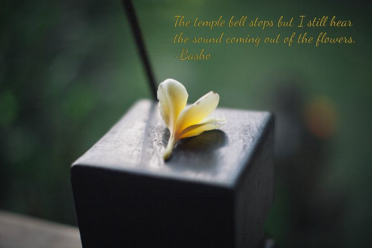 Discover the simple beauty of the Balinese culture #Bali #culture #beauty #simplicty