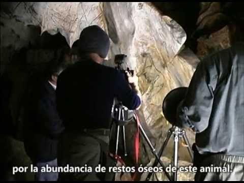 Arte Rupestre Paleolítico en la Cueva de Las Monedas, Puente Viesgo, Cantabri...