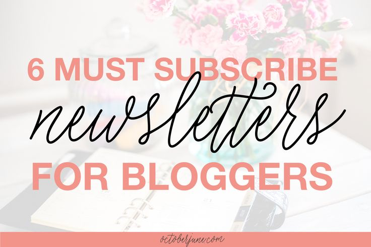 Perk up your inbox with these 6 must-subscribe newsletters for bloggers + creative entrepreneurs!