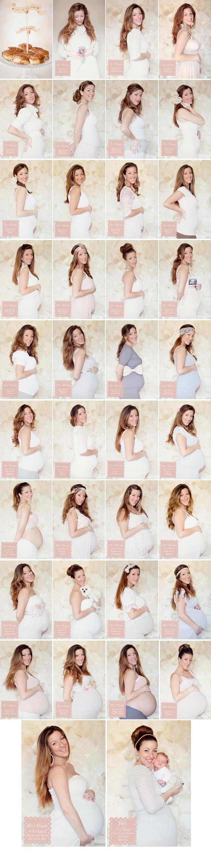 Very beautiful pregnancy timeline: