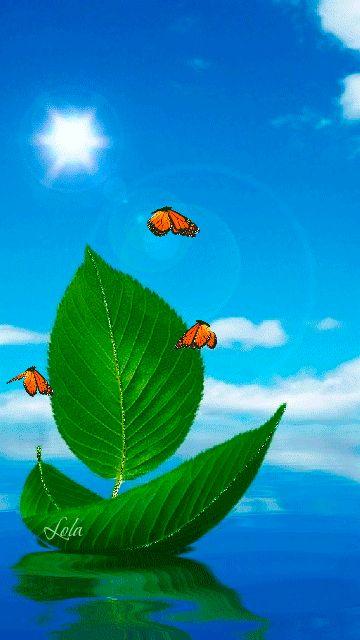 Spring. Ship. Butterflies. 360х640