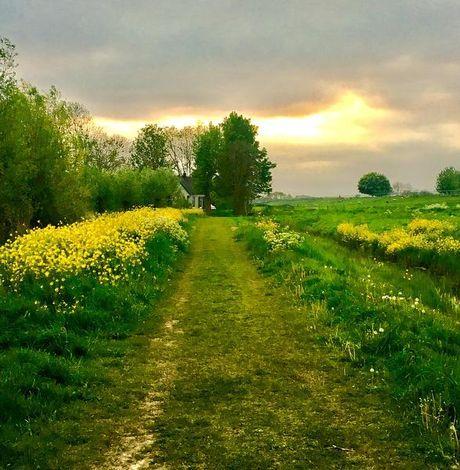 Omgeving Mijdrecht in het voorjaar. Maakster foto Marja Bakker