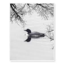 Image result for loon tattoo