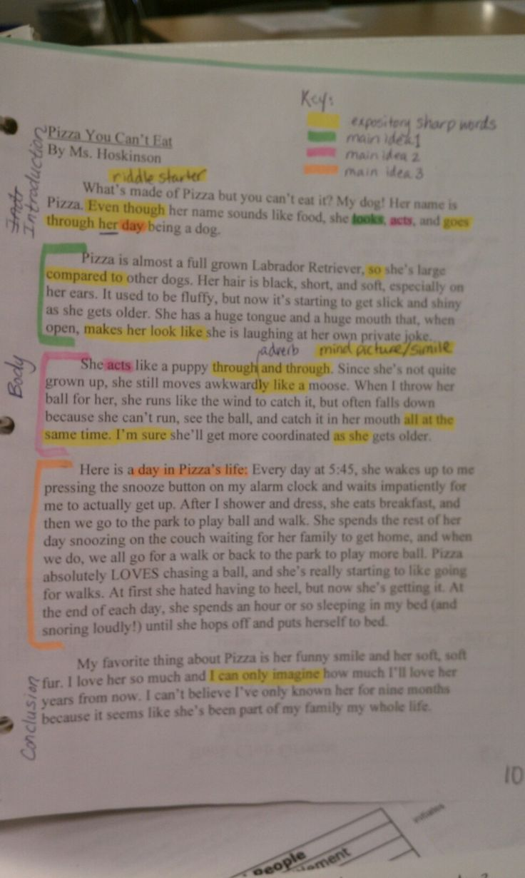 Denison university application essay