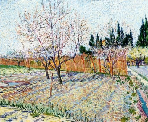 Orchard with Peach Trees in Blossom  1888.  Vincent van Gogh