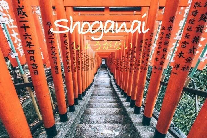 """El significado literal de Shoganai es""""que no se puede evitar"""",sin embargo no hace alusión a desesperar o desalentar.Significa aceptar que algo está fuera de su control.Ánima a la gente a darse cuenta de que no era su culpa y a seguir adelante sin remordimiento."""