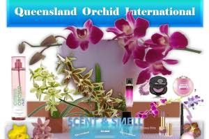 The Scents and Smells of Orchids ❀👃✾ https://queenslandorchid.wordpress.com/2015/05/30/the-scents-and-smells-of-orchids/