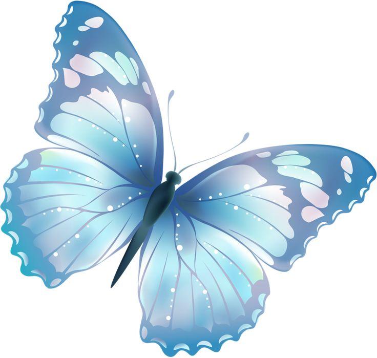 ‿✿⁀°Butterflies°‿✿⁀