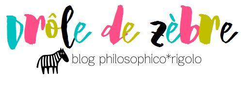Bannière de mon blog Drôle de zèbre