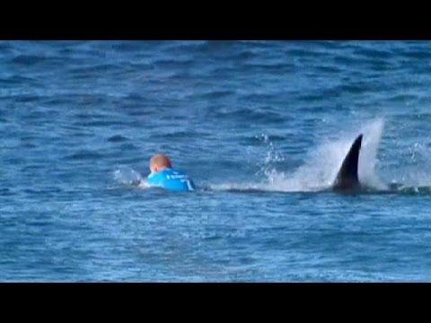 Sud Africa, squalo attacca il campione di surf Fanning