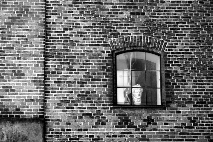 Window by Luana Popa