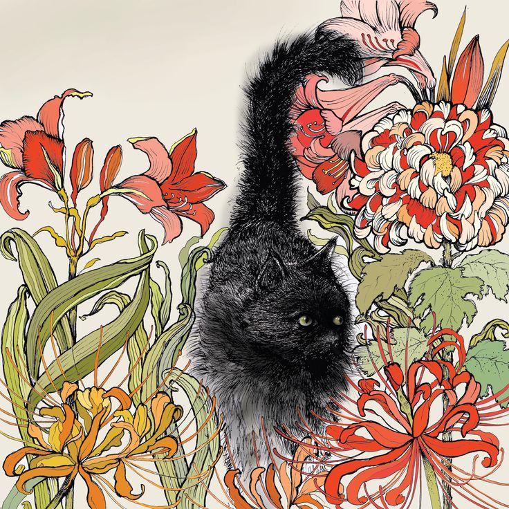 TW37 - Black Cat