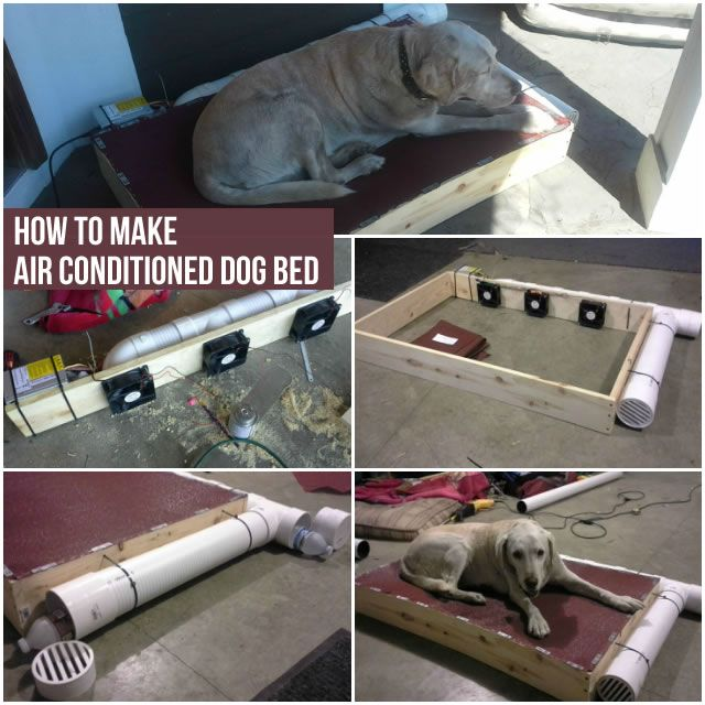 Best 25 air conditioned dog house ideas on pinterest for How to build an air conditioned dog house