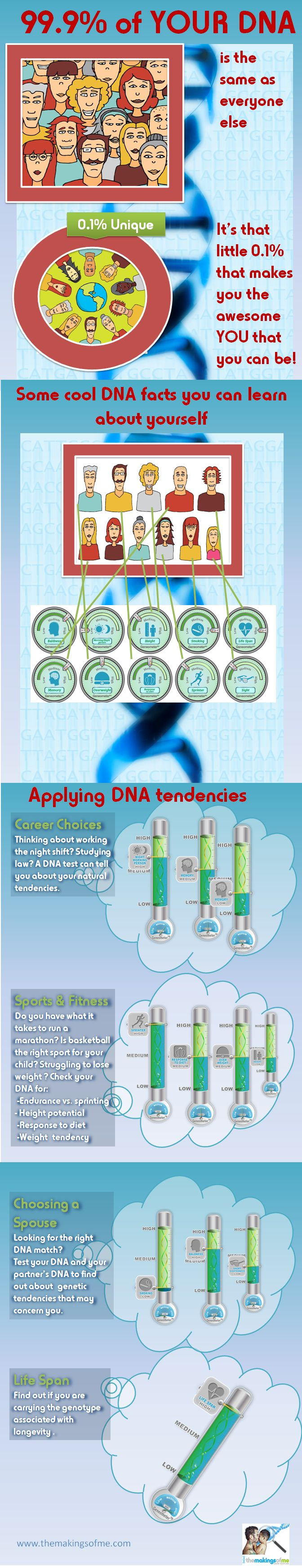 Applying DNA Tests Insights to Life Choices – Infographics