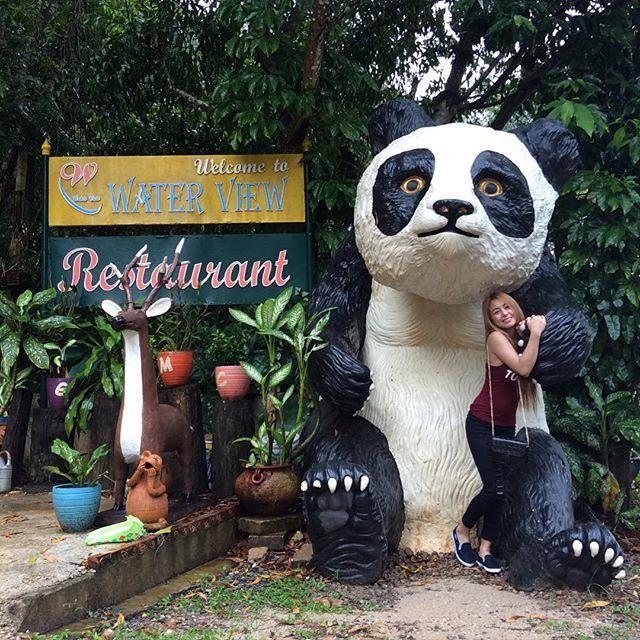 Look oh laki nya  if ever na magtatayo ako ng isang restaurant gusto ko may Panda din  by khim_duenas