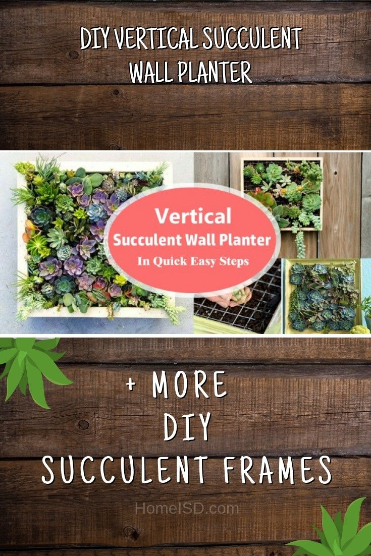 Diy Vertical Succulent Wall Planter Craft Homedecor Walldecor Succulents
