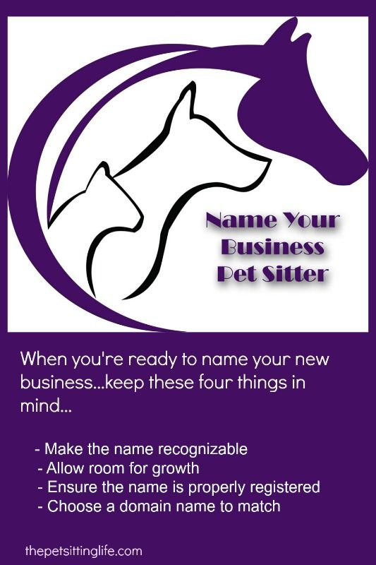 When you name your pet sitting business, you want it to let potential clients know exactly what you do. These tips...and missteps...from a pro will help.