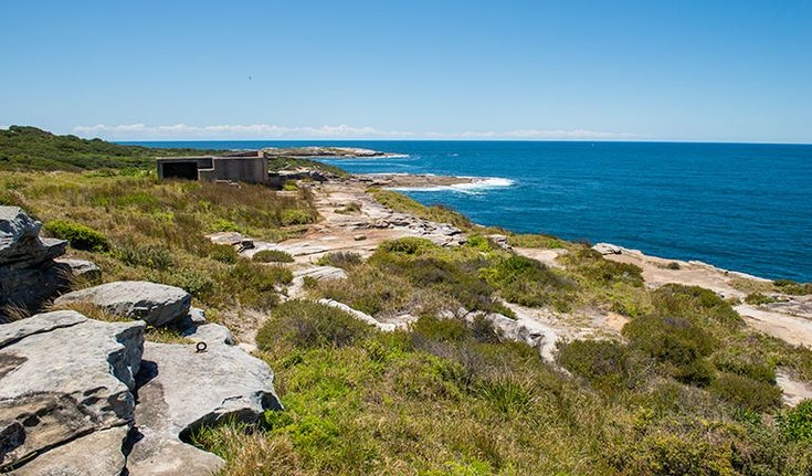 Henry Head walking track | NSW National Parks