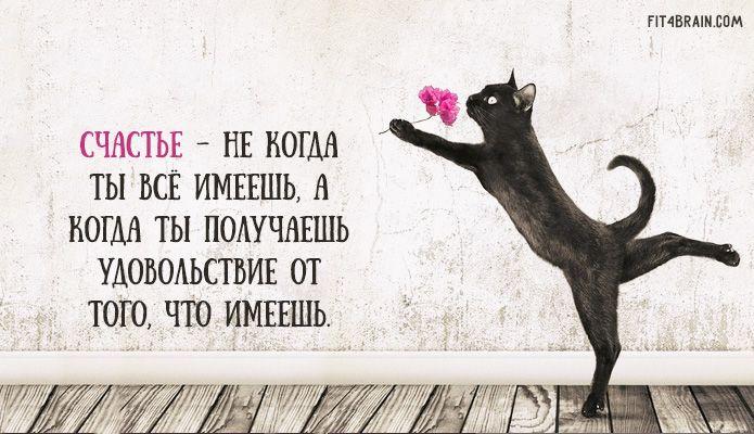 Счастье - не когда ты всё имеешь, а когда ты получаешь удовольствие от того, что имеешь