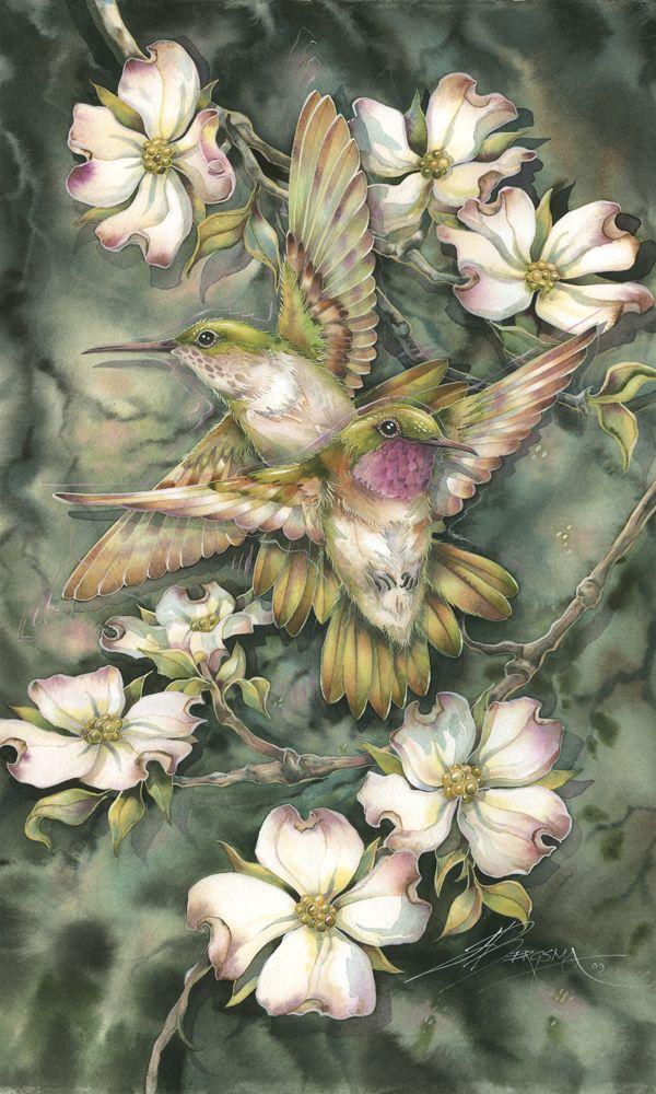 Bergsma Gallery Press Products Art Cards Birds